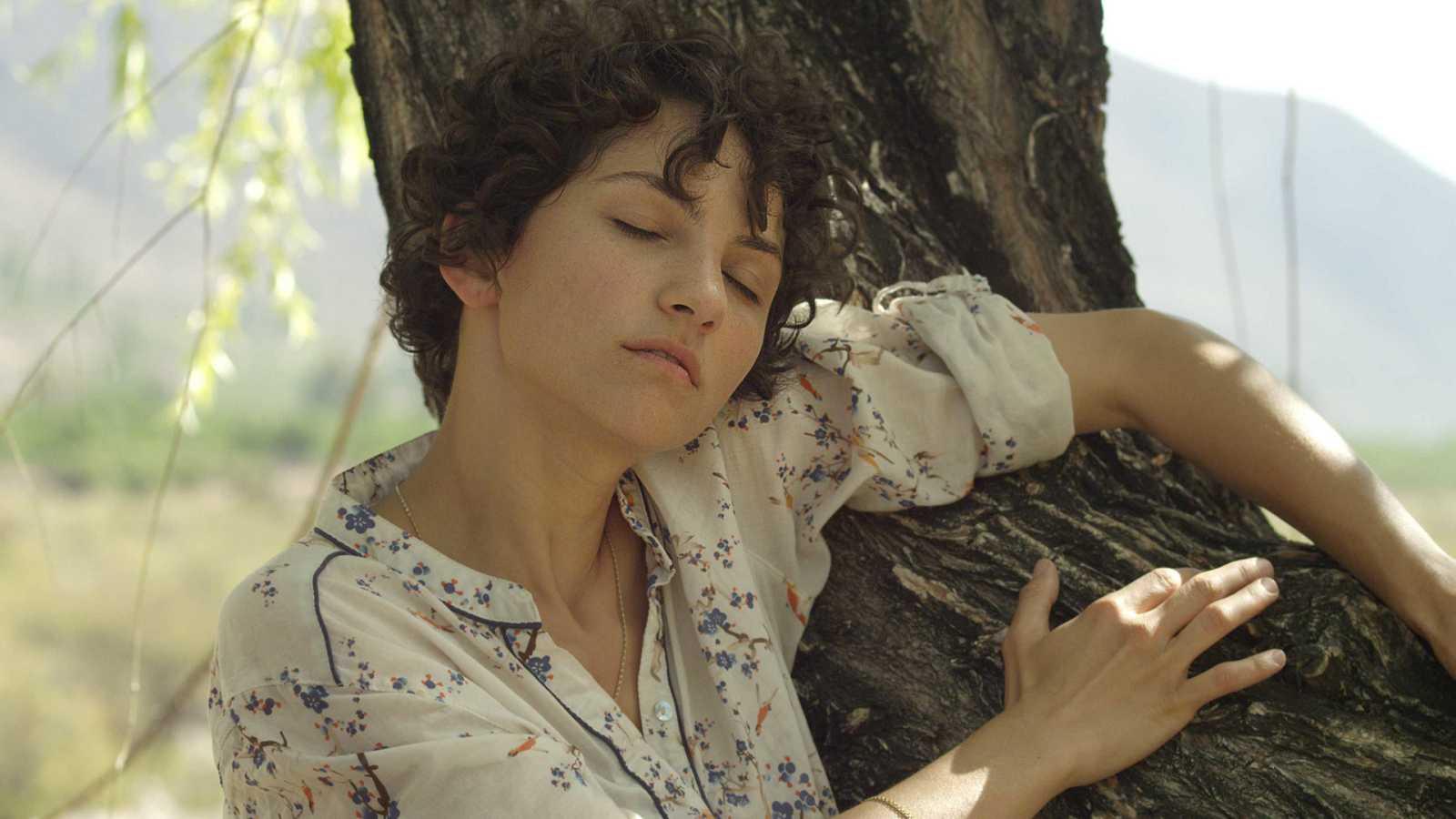 Somos cine - El árbol magnético - Ver ahora