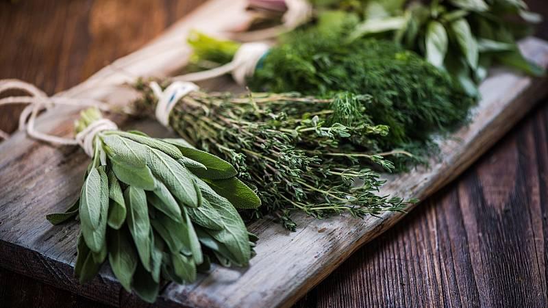 Aquí la Tierra - Historia de las hierbas aromáticas: estas son las que más usamos en la cocina española
