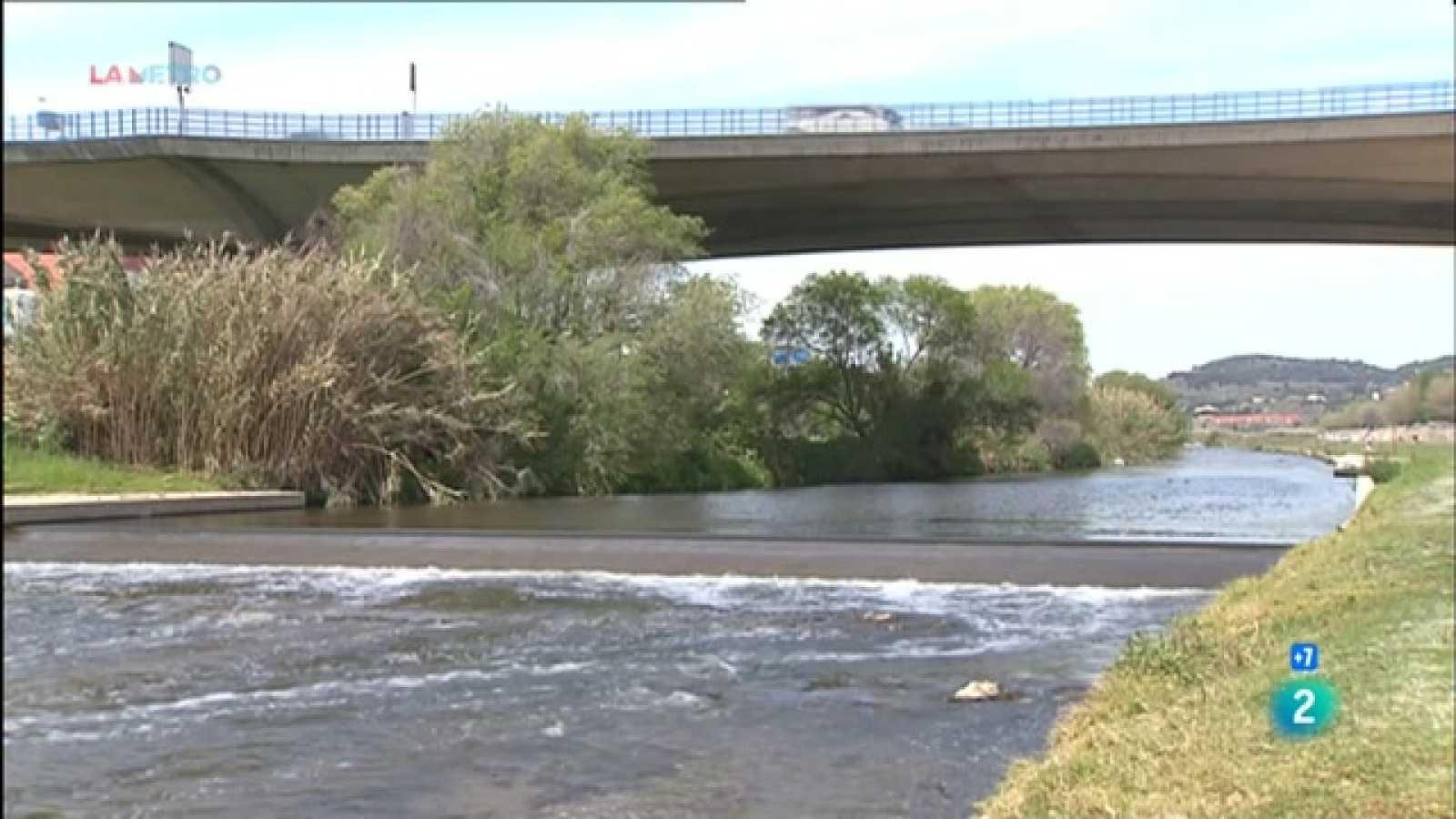 Expliquem els plans que hi ha per preservar i millorar la biodiversitat al riu Besòs