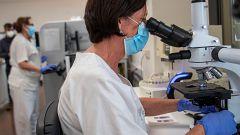 Más de un año de pandemia y aún no hay un tratamiento antiviral realmente eficaz