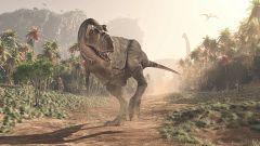 Un estudio demuestra que la velocidad del paso de un tiranosaurio era inferior a la de un ser humano