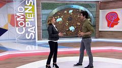Como Sapiens - Programa 54: Socarrat, tortos asturianos y gató mallorquín