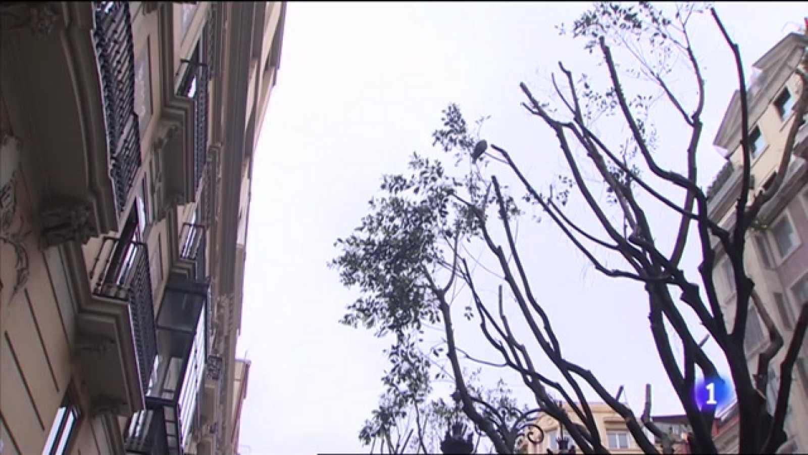 L'Informatiu Comunitat Valenciana 1 - 26/04/21 ver ahora