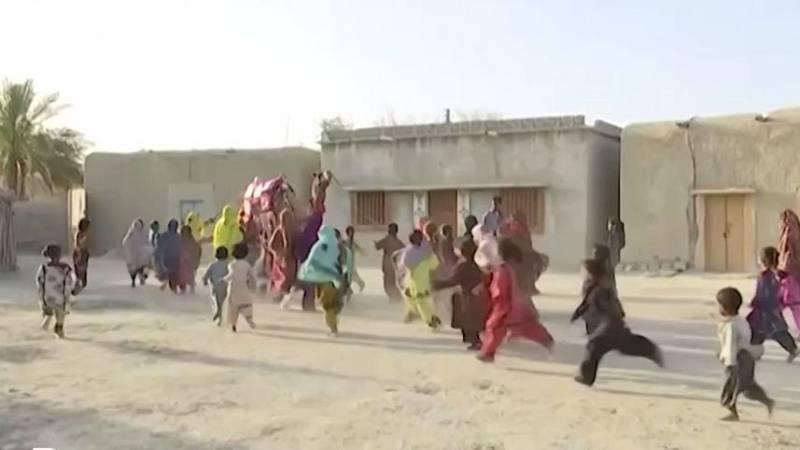 Roshán, el camello biblioteca que distribuye libros a niños en Pakistán