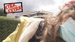 Xtra, Extra! - El ataque de la abeja - 30/04/21