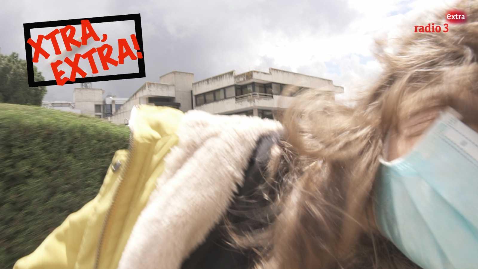 Xtra, Extra! - El ataque de la abeja - 30/04/21 - ver ahora