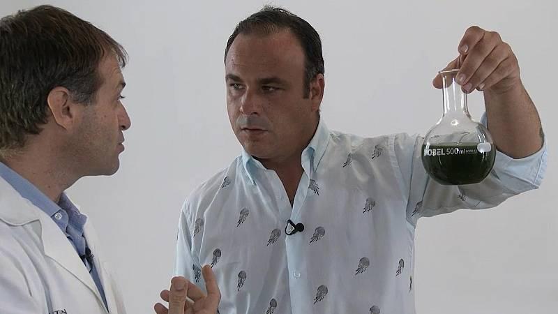 El chef del mar - Puerto de Santa María y Puerto Real - ver ahora