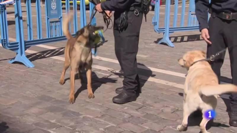 Unidad Canina de Pamplona