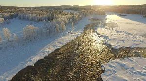 Entre Finlandia y Suecia
