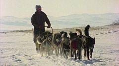 El hombre y la tierra (Serie canadiense) - Iditarod. 1000 millas sobre hielo II
