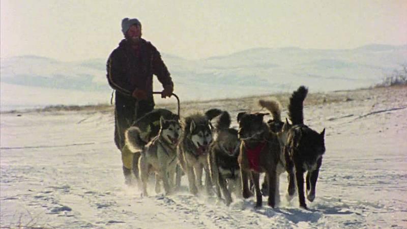 El hombre y la tierra (Serie canadiense) - Iditarod. 1000 millas sobre hielo II - ver ahora