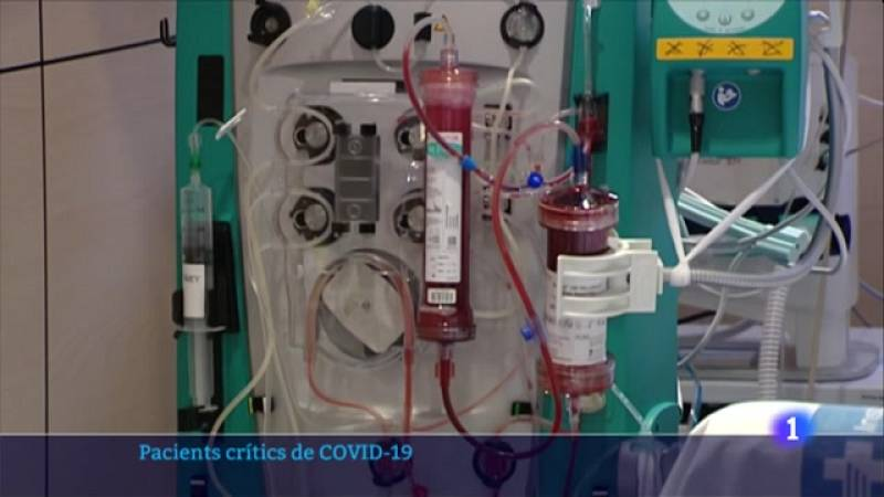 Segons el doctor Ricard Ferrer el sistema de depuració és similar a la diàlisi