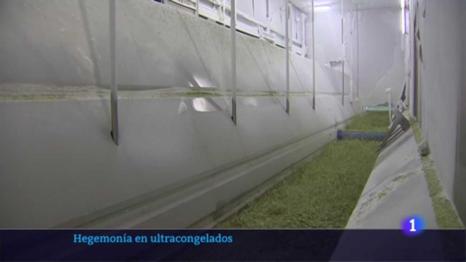 Ultracongelados en Navarra