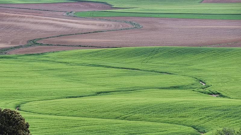 Tractorista de Castilla, un agricultor que difunde en Twitter la belleza del territorio que le rodea