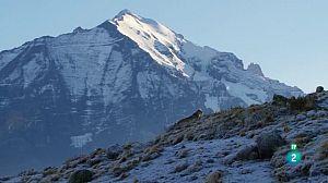 Els Andes salvatges: La Patagònia indòmita