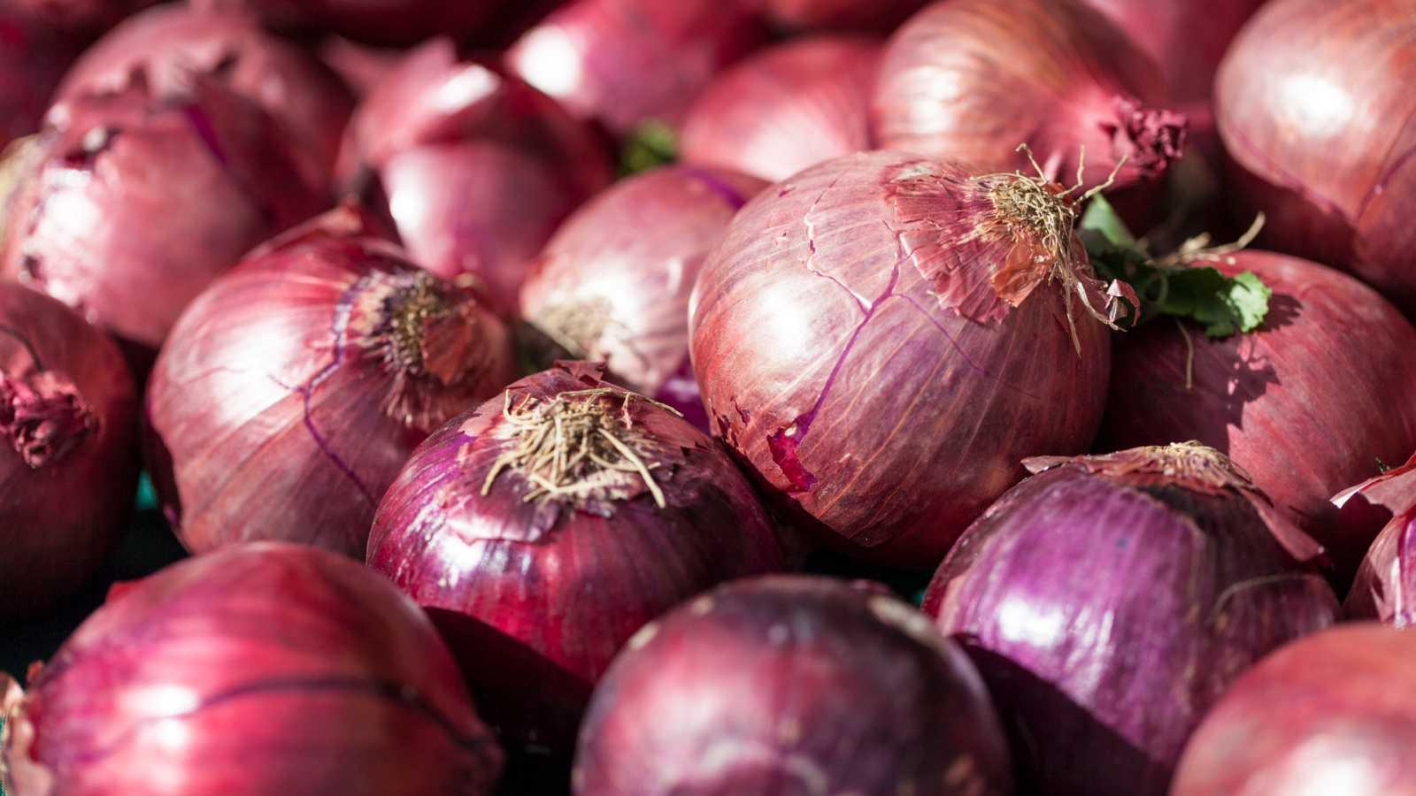 Aquí la Tierra - La cebolla de Zalla: color y sabor identificativos