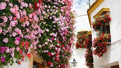 ¿Cómo se decoran las rejas en Córdoba?