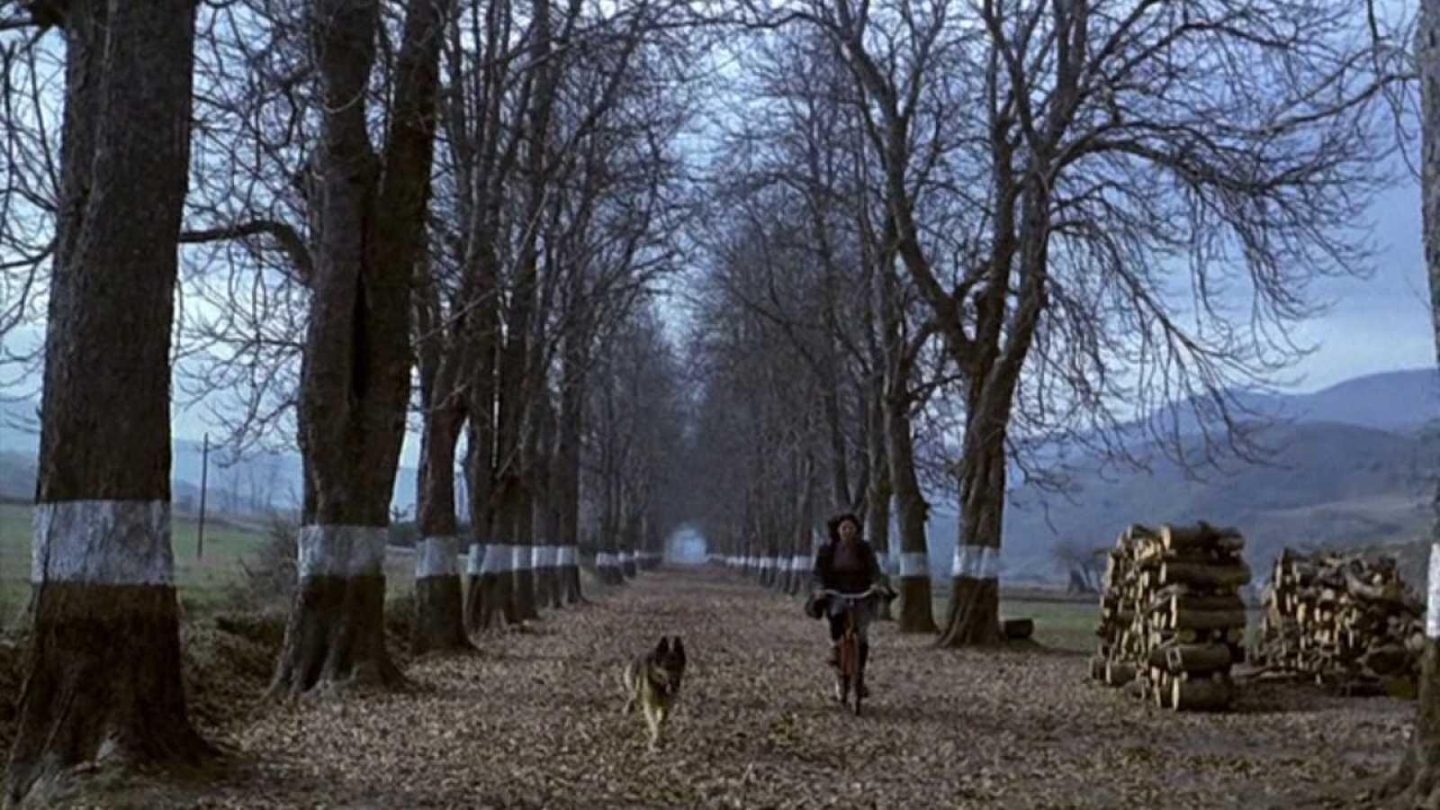 Días de cine - El momento de cine de Carlo D'Ursi: 'El sur'