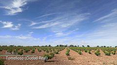 Intervalos de vientos fuertes en Canarias