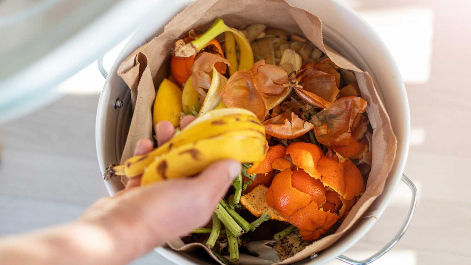 España Directo - ¿Cómo podemos no desperdiciar alimentos?