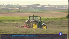 Emprendimiento en el mundo rural