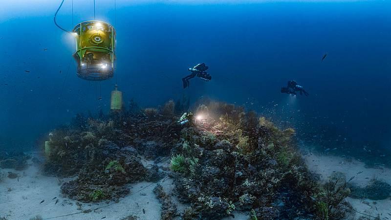 Somos documentales - Planeta Mediterráneo - ver ahora