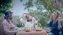 Efecte Collins - La protesta pop de Chaqueta de Chandal (Documental llarg)
