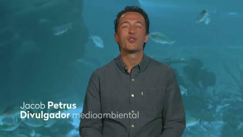 Jacob Petrus, para Objetivo RTVE