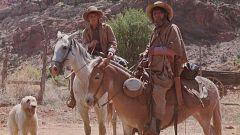Mañanas de cine - La venganza de los cheyennes
