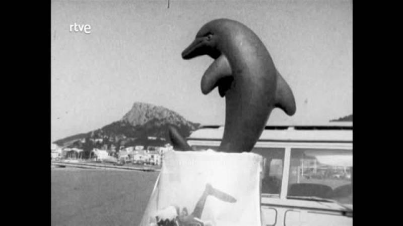Arxiu TVE Catalunya - Miramar - Instal·lació d'un dofí al fons del mar a les Illes Medes