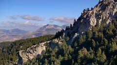 España Directo - Sierra de las Nieves, tercer Parque Nacional de Andalucía