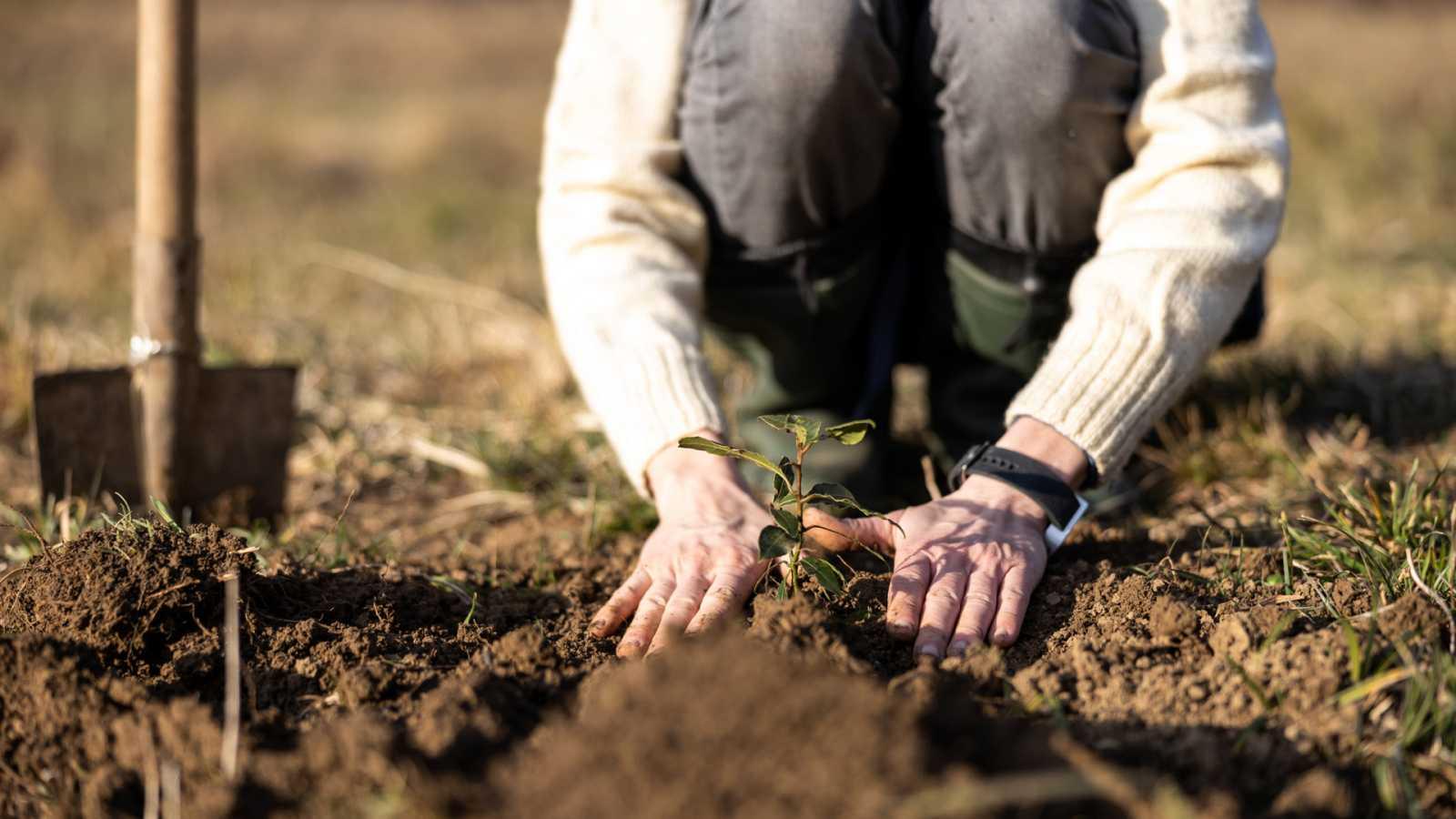 Aquí la Tierra - El regalo del pueblo de Ilundáin para las futuras generaciones