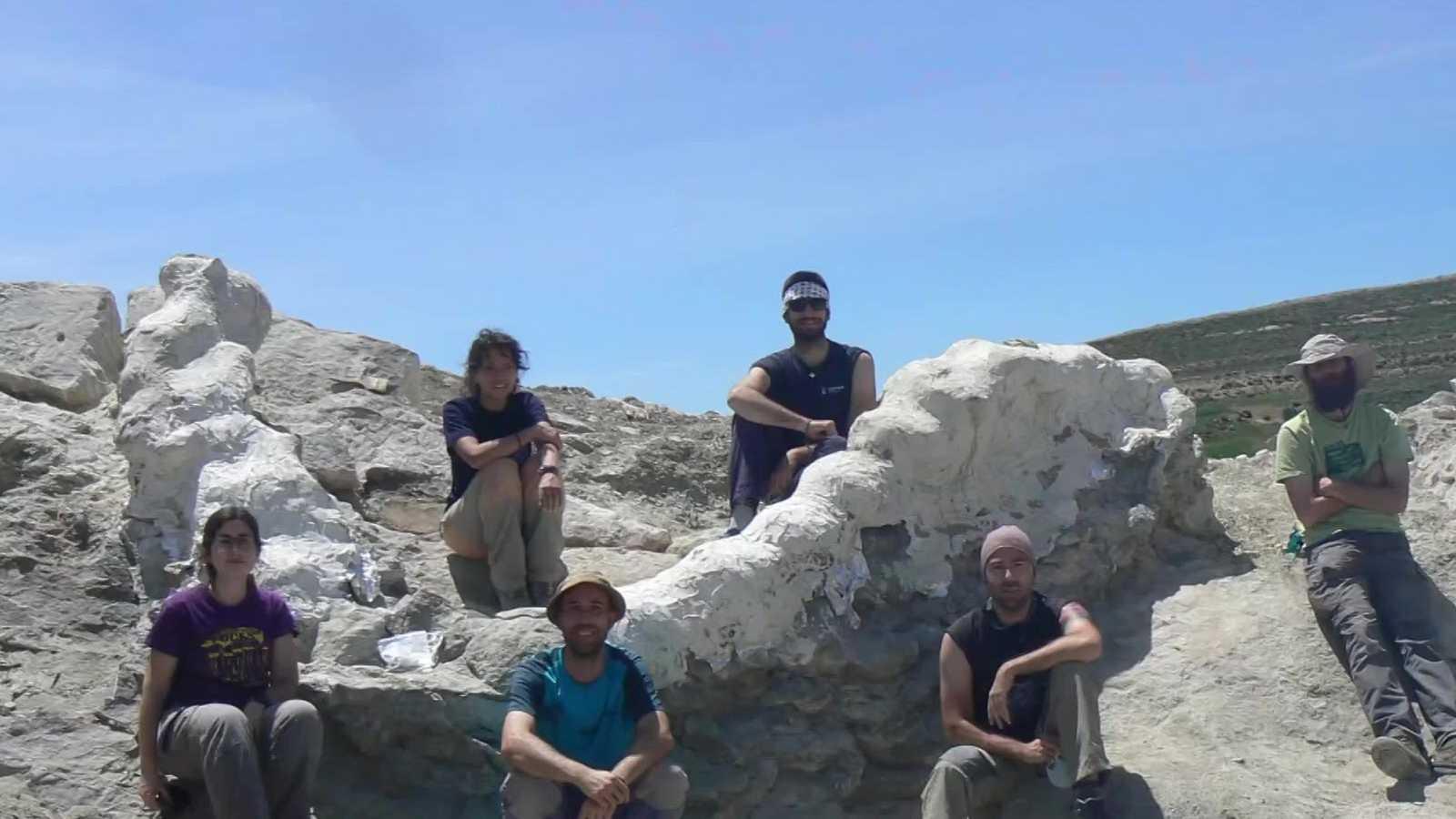 Hallan en Teruel los fósiles de un dinosaurio de más de 25 metros