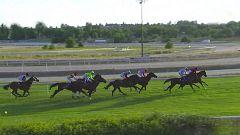 Hípica - Circuito nacional de carreras de caballos. Hipódromo de La Zarzuela