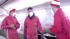 """Dani Mateo, """"El ganadero maratoniano"""" nos enseña su granja antes de embarcarse a los JJOO de Tokio"""