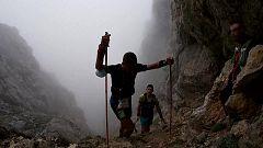 Trail - Travesera Picos de Europa 2021