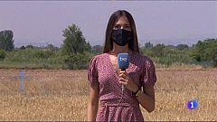 Día de la lucha contra la desertificación