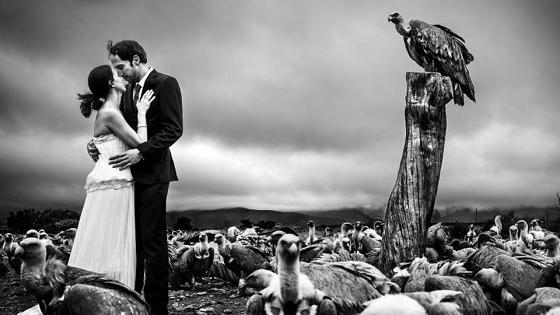 Detrás del instante - Novios entre buitres, foto de Víctor Lax