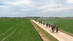 Ciclismo - Copa de España Féminas Cofidis. Clásica de l'arròs Prueba Sueca