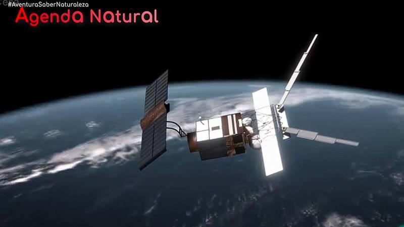 GREENPEACE bisonte urogallo satelites #AventuraSaberNaturaleza