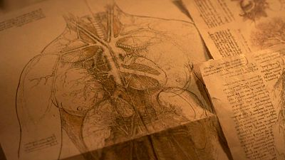 Leonardo da Vinci estudia el cuerpo humano