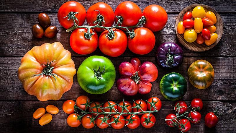 Aquí la Tierra - Especies de tomates en peligro de extinción