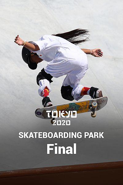 Skateboarding Park: Final