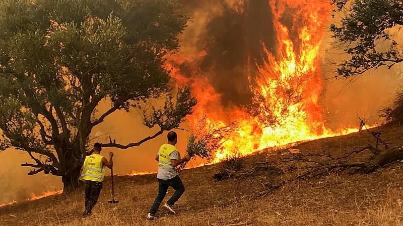 Los incendios en Argelia dejan más de 70 muertos