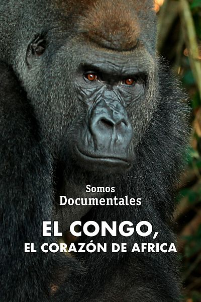 El Congo, el corazón de África