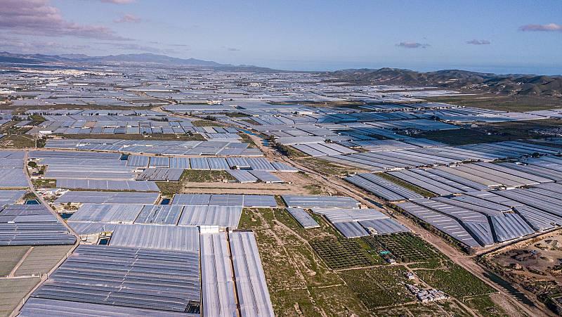 Del invernadero a la costa: la contaminación por plásticos que está afectando a Almería