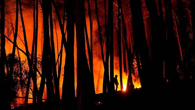 ¿Cómo se sabe si un incendio fue fortuito o intencionado?