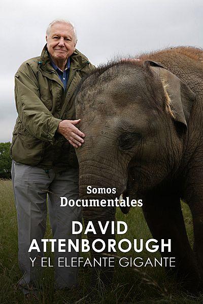 David Attenborough y el elefante gigante