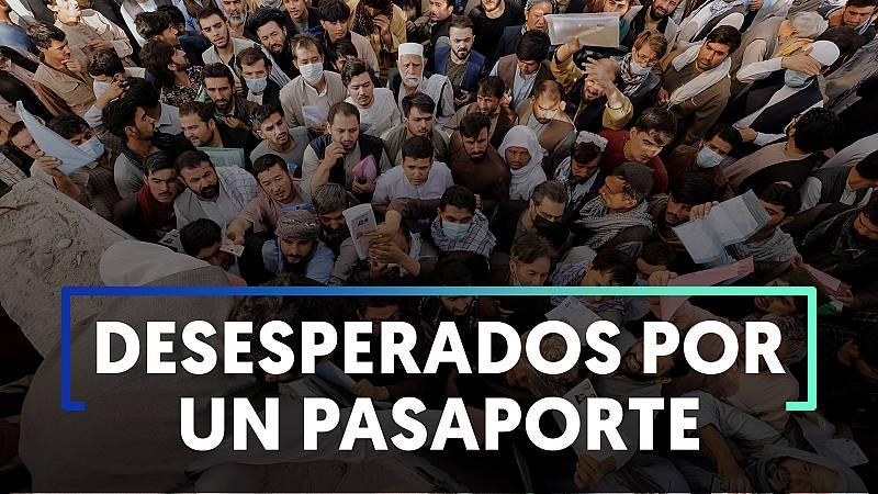 Largas colas en Kabul para conseguir el pasaporte talibán - Ver ahora