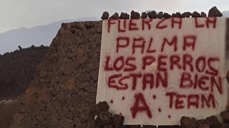 Un misterioso grupo se atribuye el rescate de los perros atrapados por la lava en La Palma